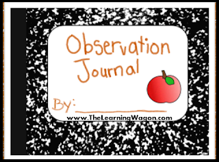 https://www.teacherspayteachers.com/Product/Observation-Journal-Apple-Studies-1837892