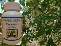 NEEM - GRAVIOLA  GuanaNeem