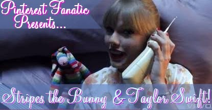 Taylor Swift, Music Video, Stripes Long Earred Bunny