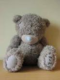 hates teddy