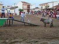 Samora Correia- Feira Anual, Semana Taurina & Festas em Hª de Nª Srª de Oliveira e Guadalupe 2013