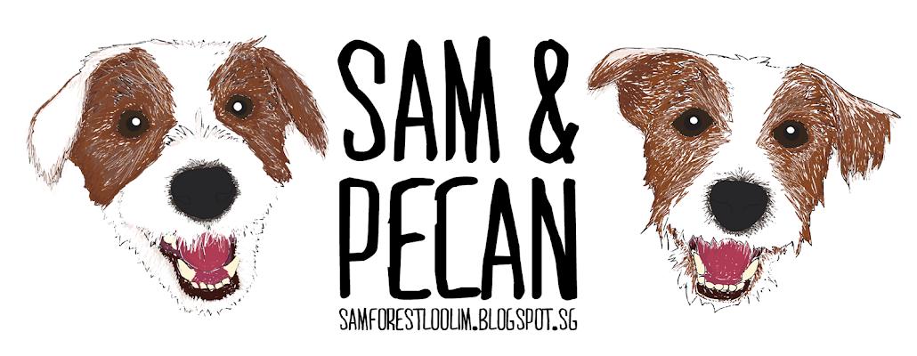 Sam's Little Forest - Dog blog Singapore