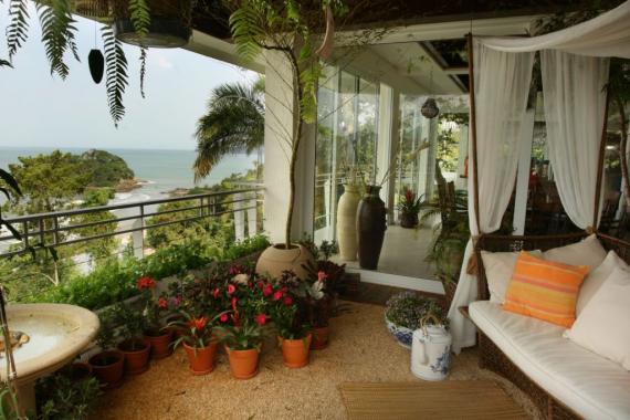 mini jardim residencial:Para quem tem pouco espaço e sonha com um belo jardim dentro de casa