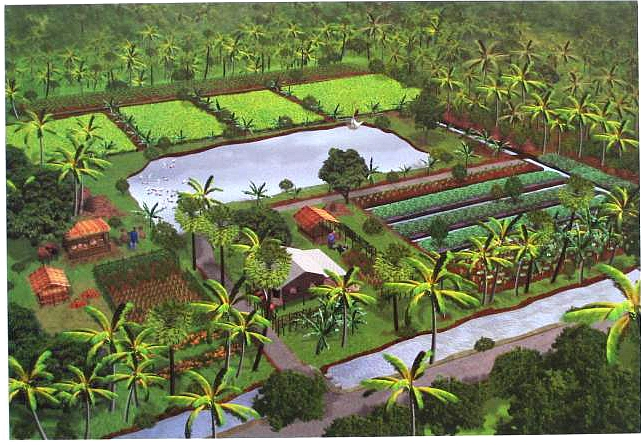 Self Sufficient Backyard Farm : vision of selfsufficiency in Thailand Agrarian values and the self