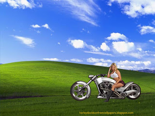 Desktop wallpapers Harley Davidson Beautiful Blonde Babe in Countryside desktop wallpaper