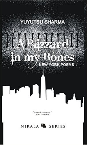 A Blizzard in my Bones: New York Poems