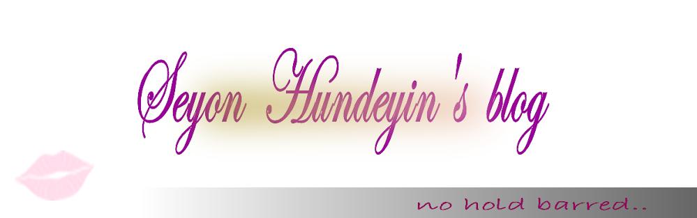 SEYON HUNDEYIN'S BLOG