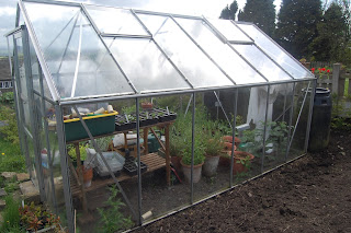Ventilate your greenhouse, it is not a hot house