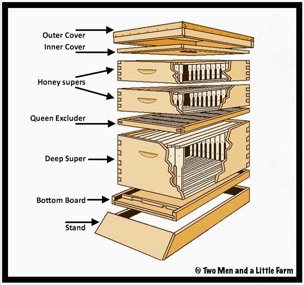 warre hive plans english pdf
