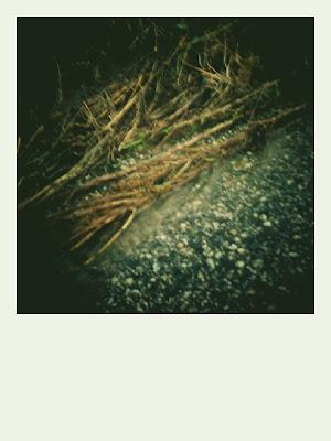 Polaroid di terreno franato