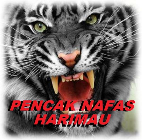 T. D NAFAS HARIMAU