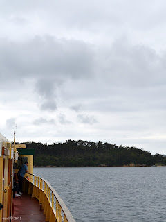 riding the ferry to taronga