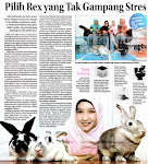 Jawa Pos, For Her. Rabu 6 April 2011