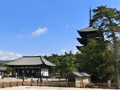 興福寺(奈良市)