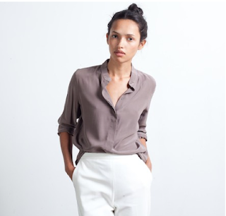 https://ca.everlane.com/collections/womens-silk-blouses/products/silk-band-truffle