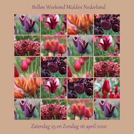 Bollenweekend Midden Nederland 2020
