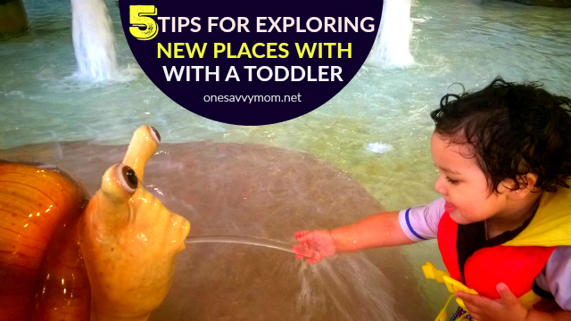5 Tips For Exploring New Places With a Toddler One Savvy Mom Sprout Organics onesavvymom blog nyc