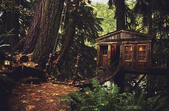 Treehouse in Seattle — USA