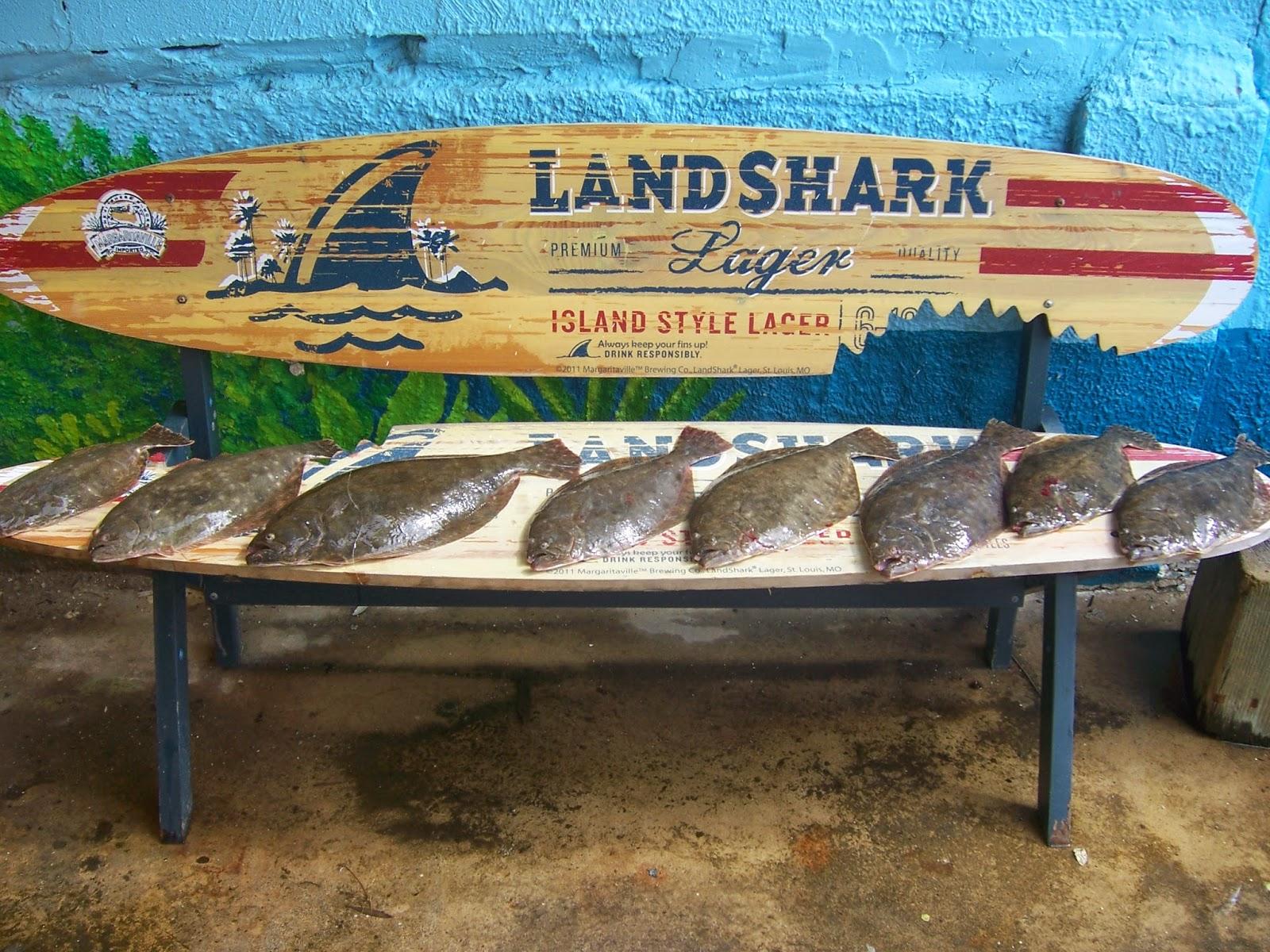 Galveston fishing report galveston fishing charter company for Good fishing spots in galveston