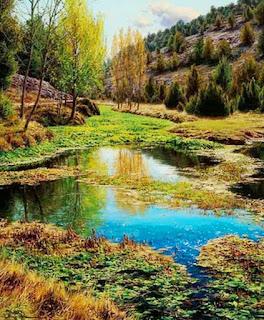Pintores Paisajistas Naturaleza Zen
