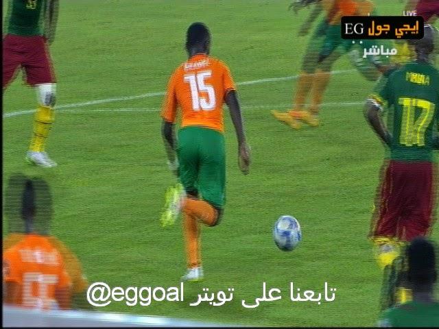 اهداف مباراة الكاميرون و ساحل العاج   كأس امم افريقيا   28-1-2015   cameron vs ivory coast GOALS