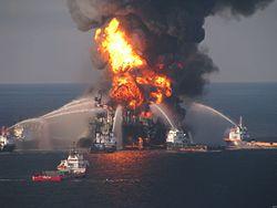 Πετρελαιοκηλίδα στον κόλπο του Μεξικού (2010)