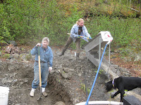 Gold mining, high banker, digging, dirt, quartz creek