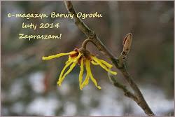 e-magazyn Barwy Ogrodu 02/2014