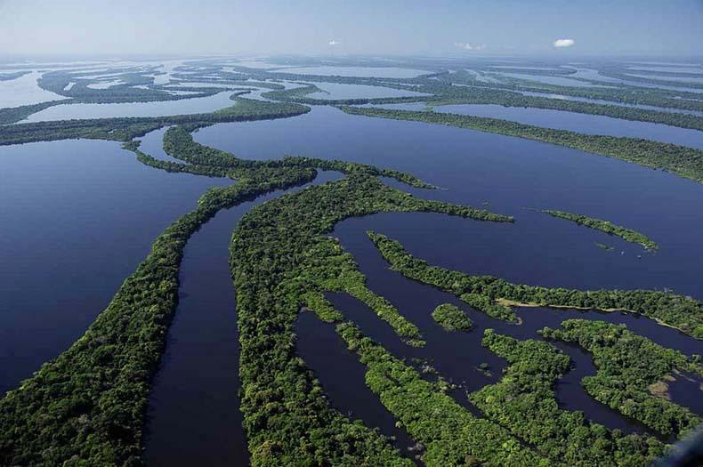 El archipiélago de Anavilhanas | Brazil