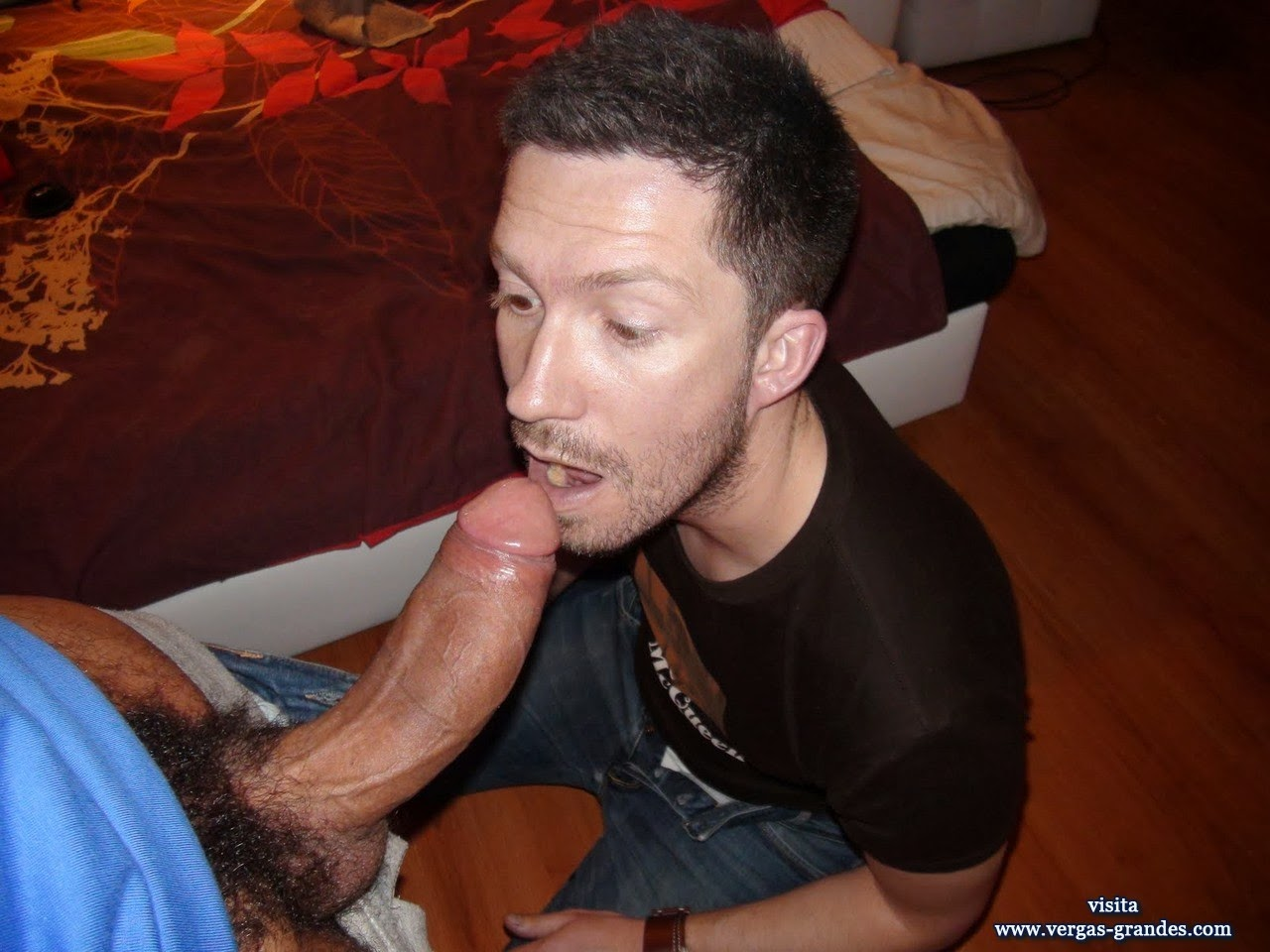 image Sucking huge gay dicks for cum tumblr his