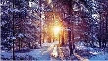 Sfondo-invernale-desktop-17