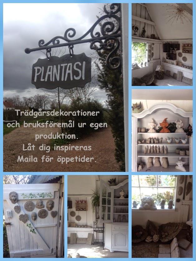 ©  Plantasi av Petra