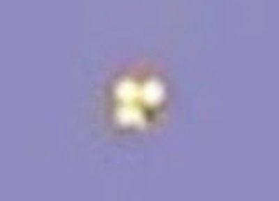 Orange UFO Captured Above Argentina 2015, UFO Sighting News