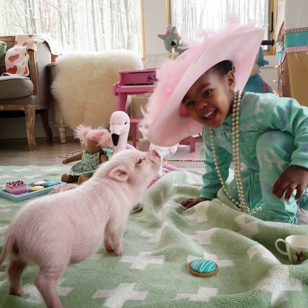 "Lindsey writes, ""God has blessed us so much through adoption and it is now my passion to share adoption love with others!"" - The Heartmelting Friendship Of A 2-Year-Old Girl And Her Piglet"