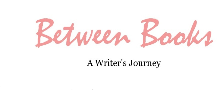 Between Books--A Writer's Journey
