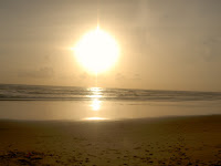 MTDC Beach at Tarkarli
