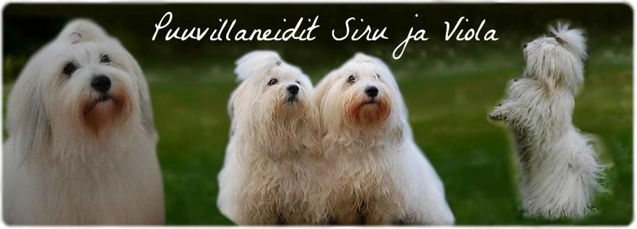 Puuvillaneidit Siru ja Viola