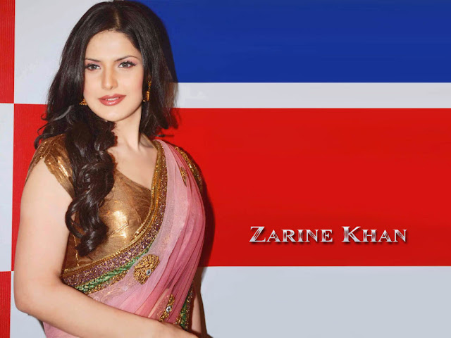 Indian Celebrities Zarine Khan Hot HD Backgrounds 1024x768