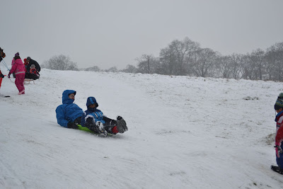 sledging in Richmond Park
