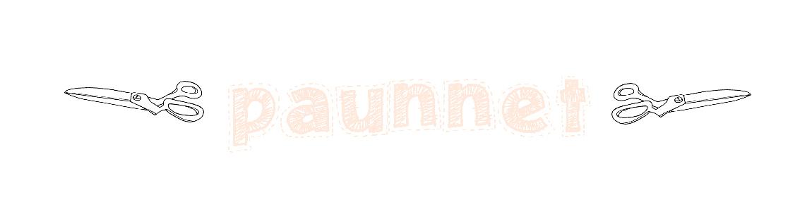 :: paunnet ::