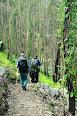 Ar livre e Aventura nas serras de Valongo 2016