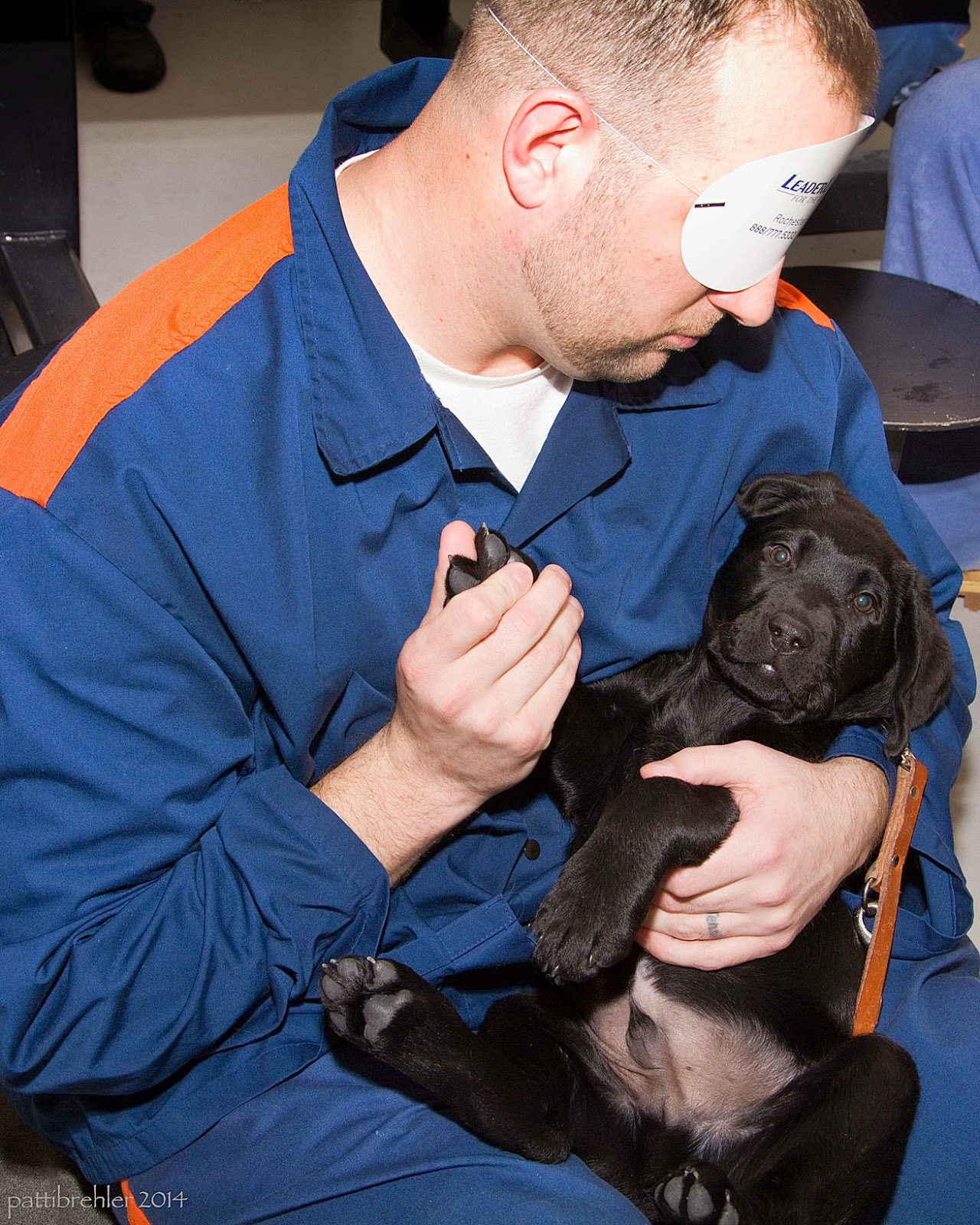 A man dressed in the blue prison uniform is cradling a small black lab puppy on its back in his lap. The man is blindfolded, he is holding the puppy's right front paw with his right hand and supporting the puppy with his left hand. The puppy is looking at the camera.