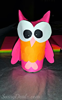 owl toilet paper roll valentines day craft