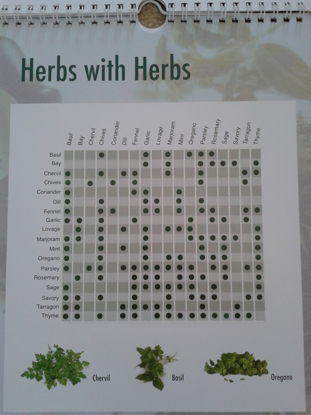 Word In Veg Ways Herb Guide For Vegetarian Cooking