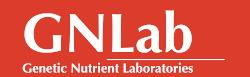 GN Lab