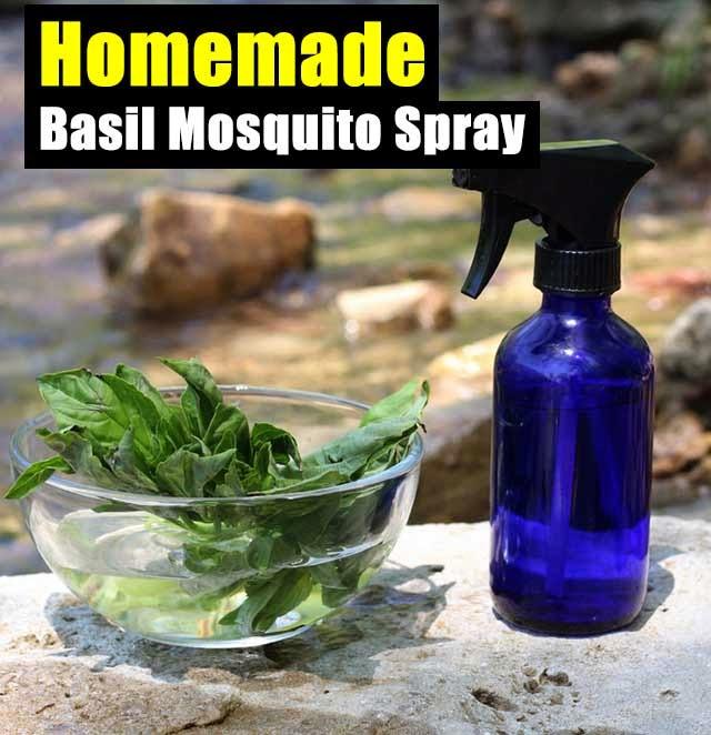 Homemade Basil Mosquito Spray