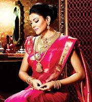 Bollywood, actress, susmitha, sen, in, saree