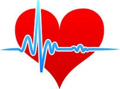 Plante medicinale pentru normalizarea tensiunii arteriale