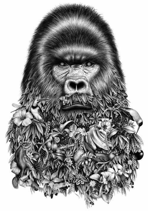03-Gorille-Violaine-Orsoni-&-Jérémy-Schneider-Drawings-www-designstack-co