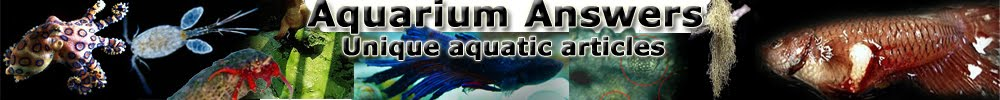 aquarium and pond answers, information, articles, resources